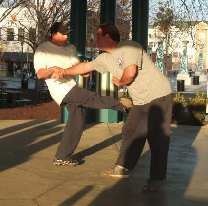 Northern Shaolin Kung Fu Martial Arts in Atlanta