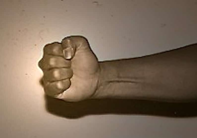 Fist of Atlanta Kung Fu